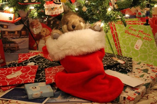 Christmas presents under the Christmas Tree