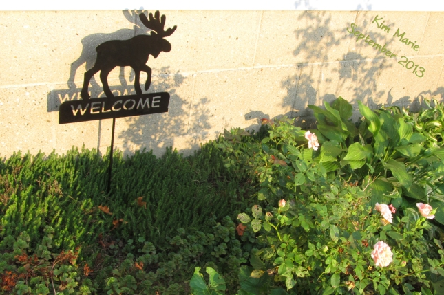 A welcome sign witha moose on it in a garden against a house.