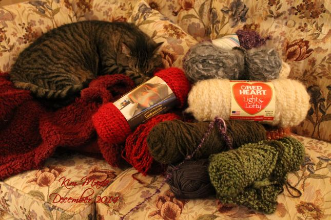 Gray tiger cat resting on a blanket and surrounded by yarn and yarn and more yarn is dark colors that cooridnate with the floral brown and red and moss couch.