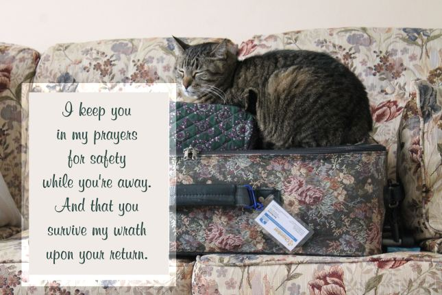 "A gray tiger kitty sitting on a suitcase says, ""I keep you in my prayers for safety while you're away. And that you survive my wrath upon your return."""